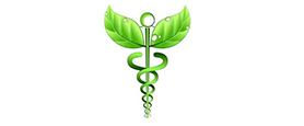 voedingsadvies - supplementen advies - Praktijk Immens